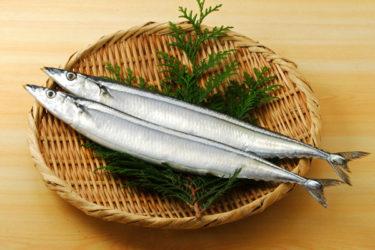 高級魚…サンマ